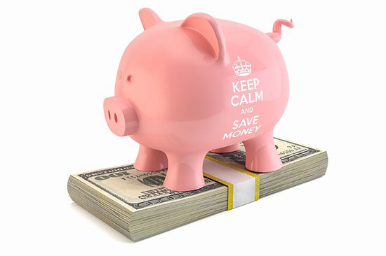 pig standing on a stack of dollar bills